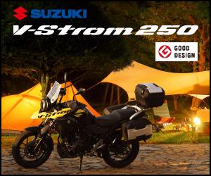Vストローム250