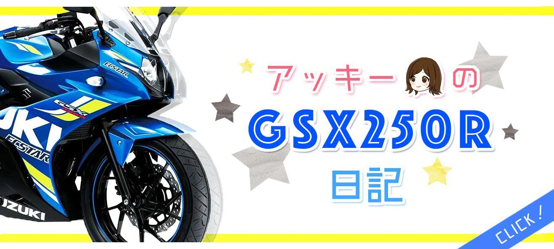 ☆ アッキーのGSX250R日記 ☆