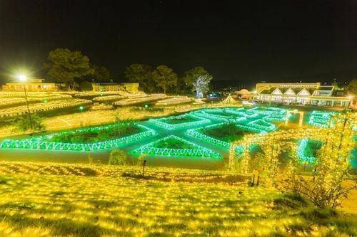 茨城県フラワーパーク イルミネーション!