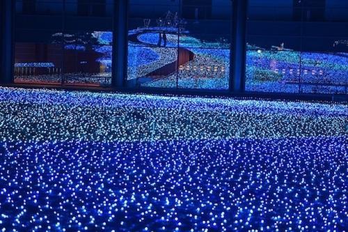 奈良公園 第10回しあわせ回廊なら瑠璃絵