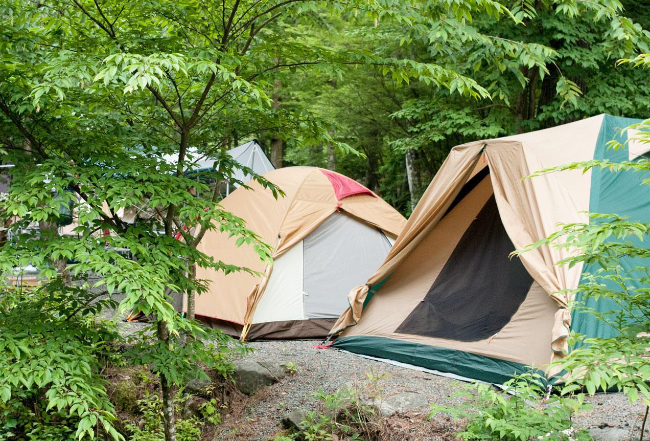 【キャンプ初心者】第一弾!サイトって何?これに気を付ければ楽しいキャンプになる!
